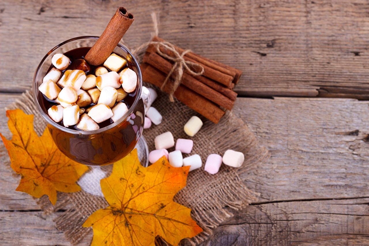 Фотография зефирки Горячий шоколад Корица Пища Бокалы Маршмэллоу Какао напиток Еда бокал Продукты питания