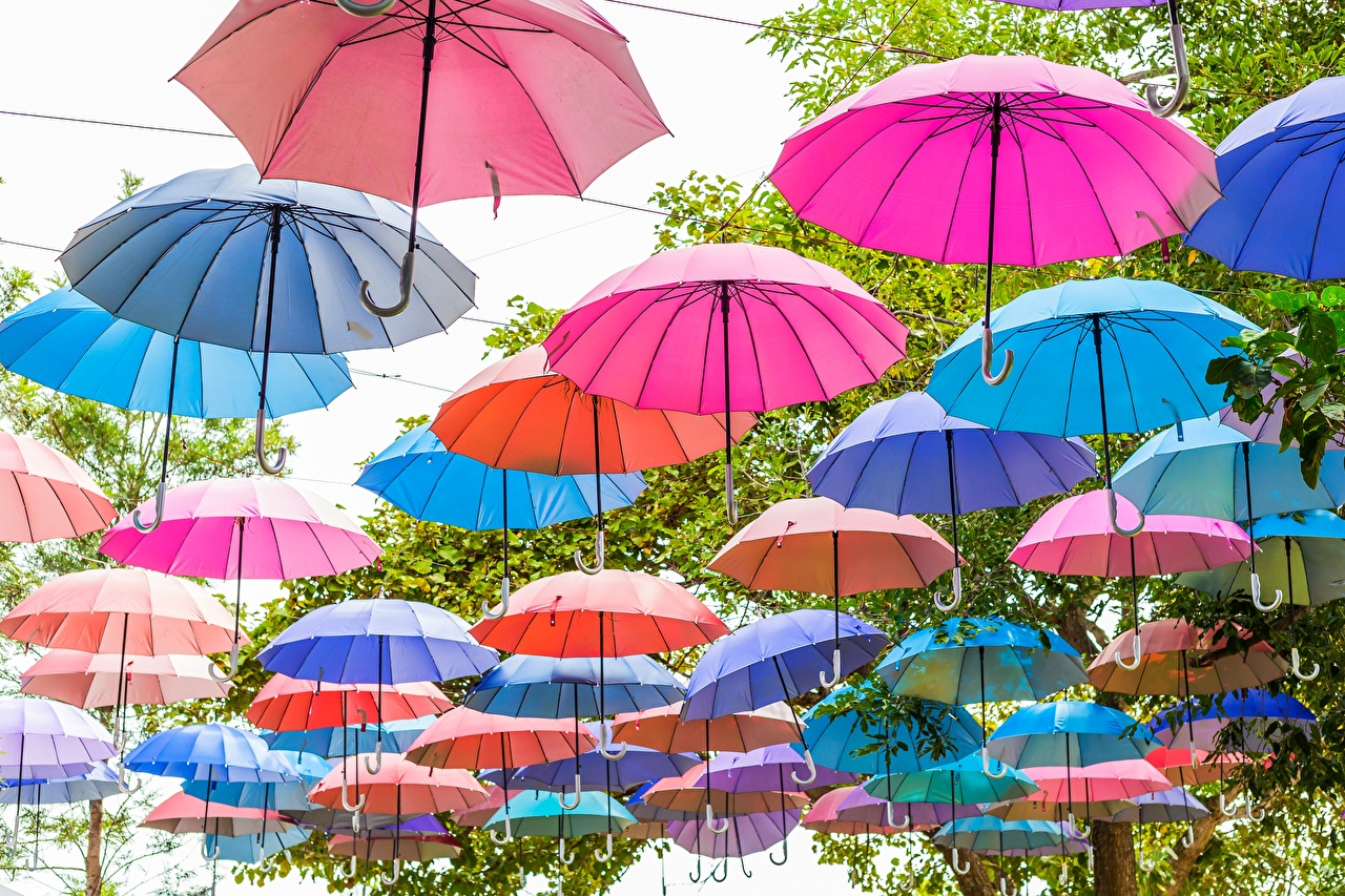 Фотографии зонтом Много Зонт зонтик