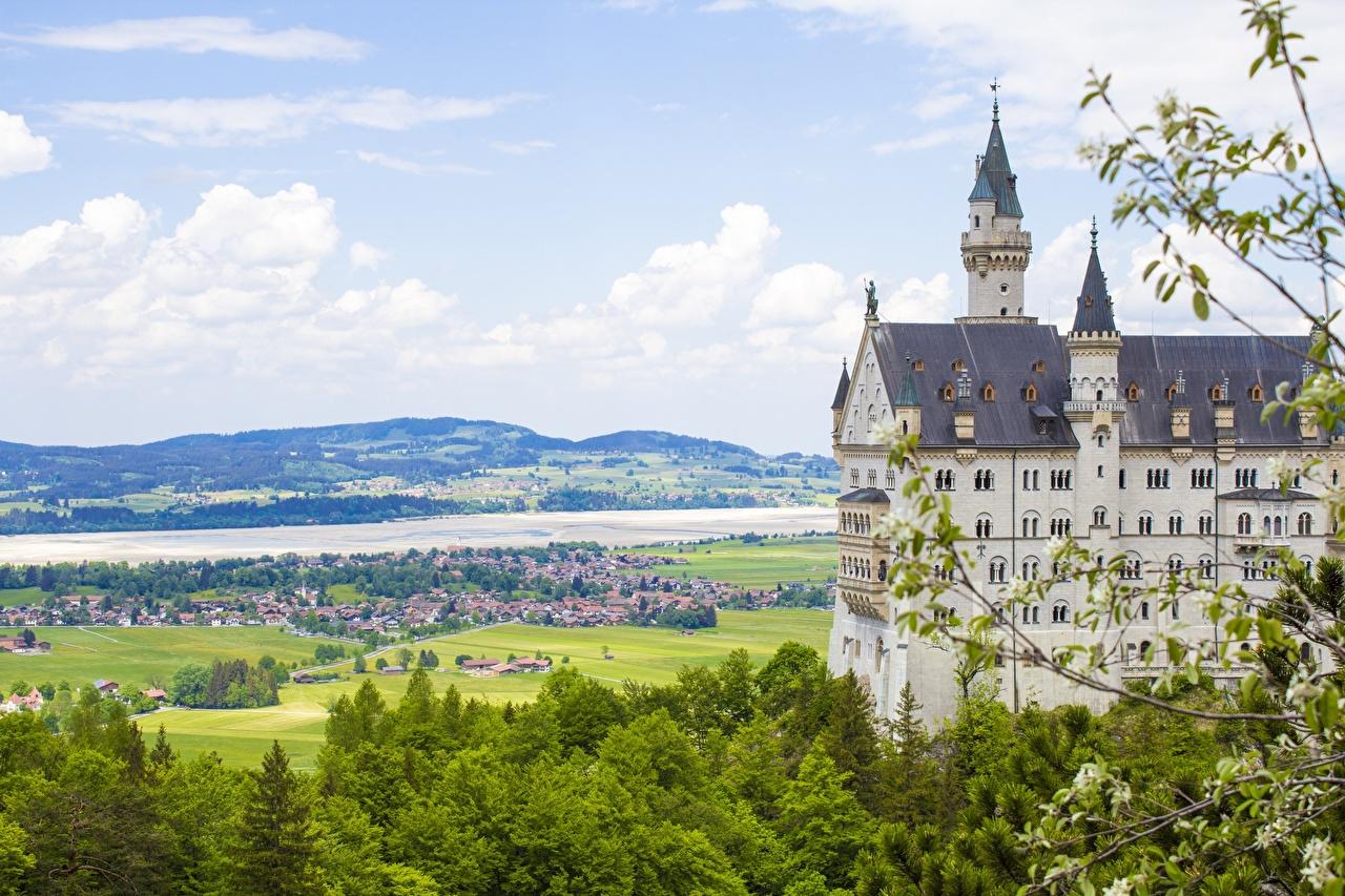 Фотография Нойшванштайн Германия Лето Замки на ветке город замок Ветки ветка ветвь Города
