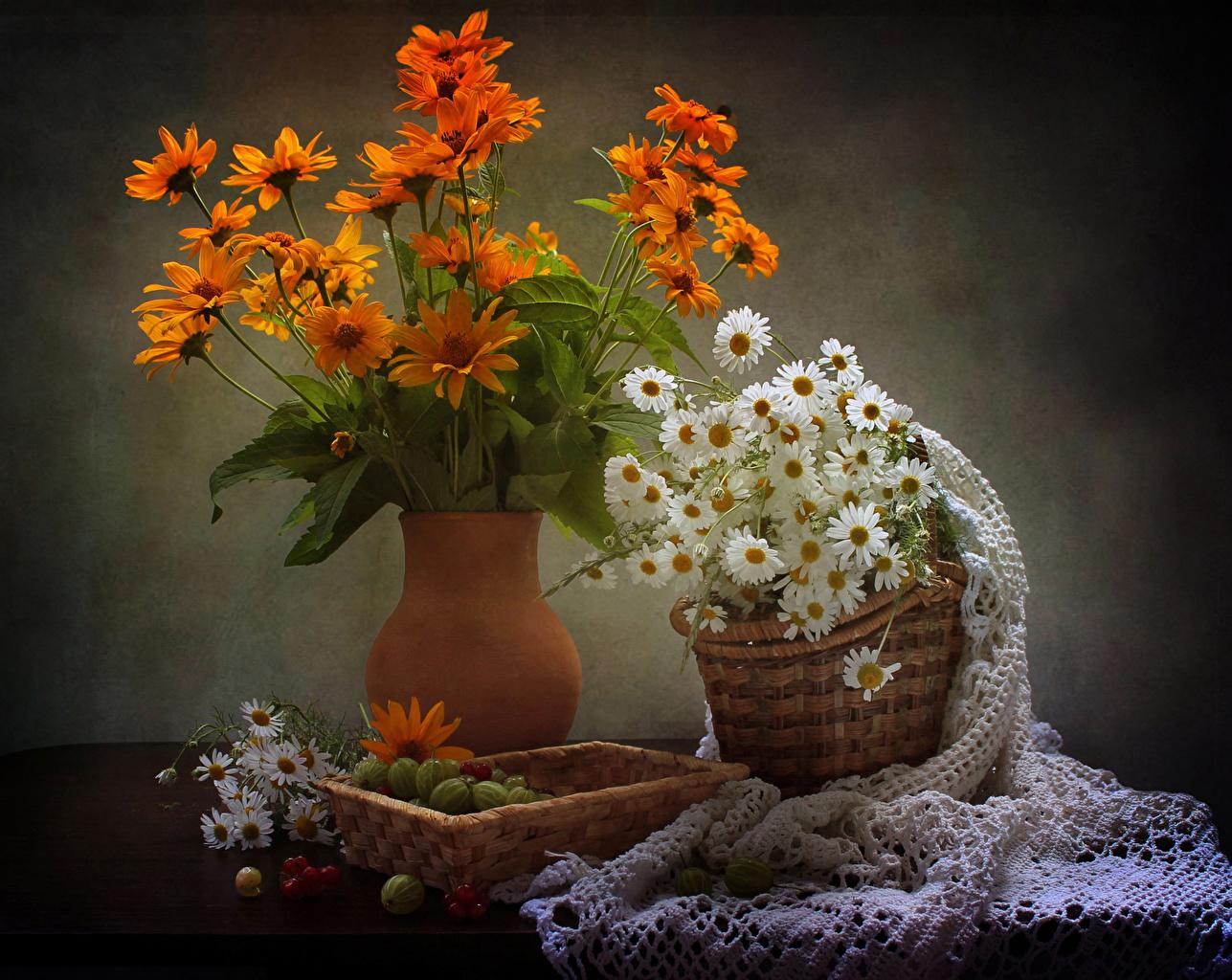Картинки цветок Корзина Газания Ромашки Крыжовник вазы Натюрморт Цветы корзины ромашка Корзинка Ваза вазе