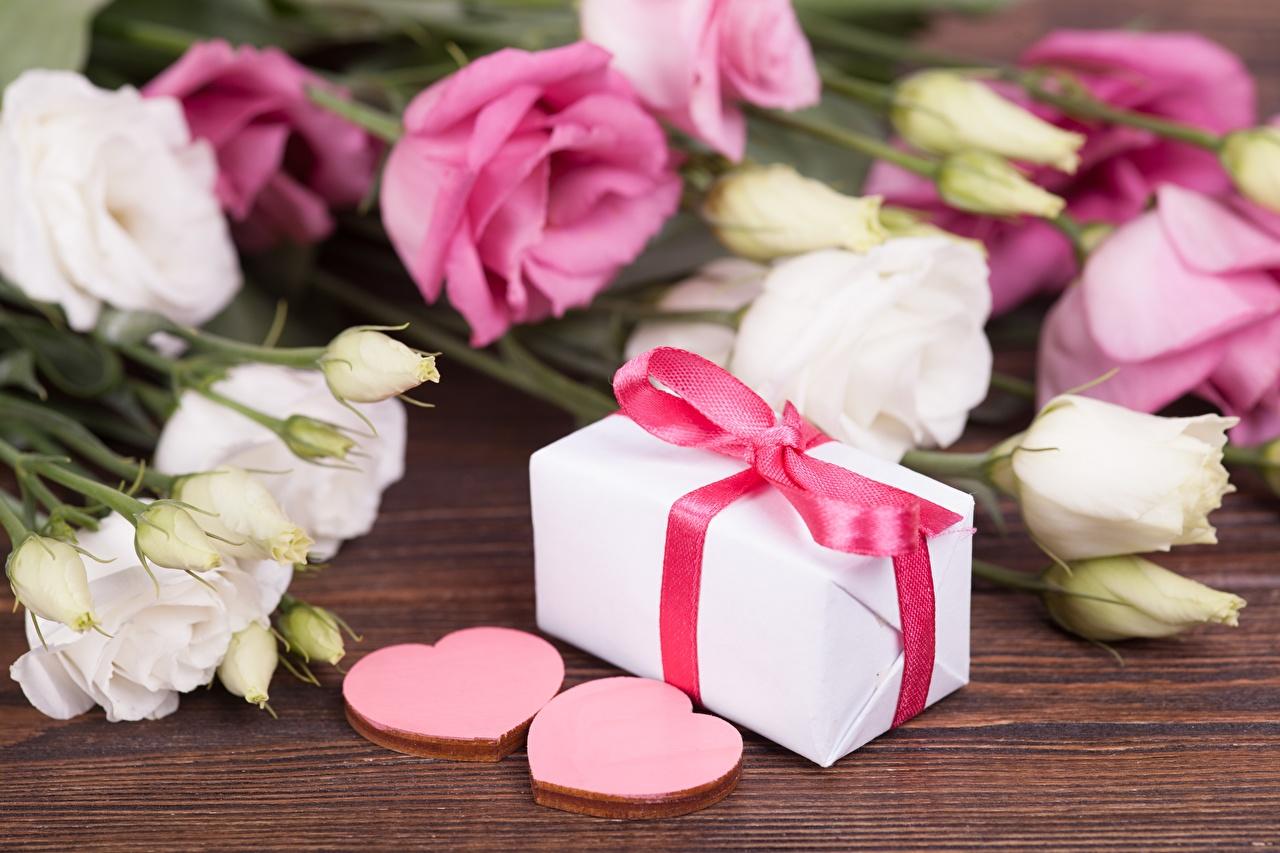 Фото День всех влюблённых Сердце цветок Подарки День святого Валентина серце сердца сердечко Цветы подарок подарков