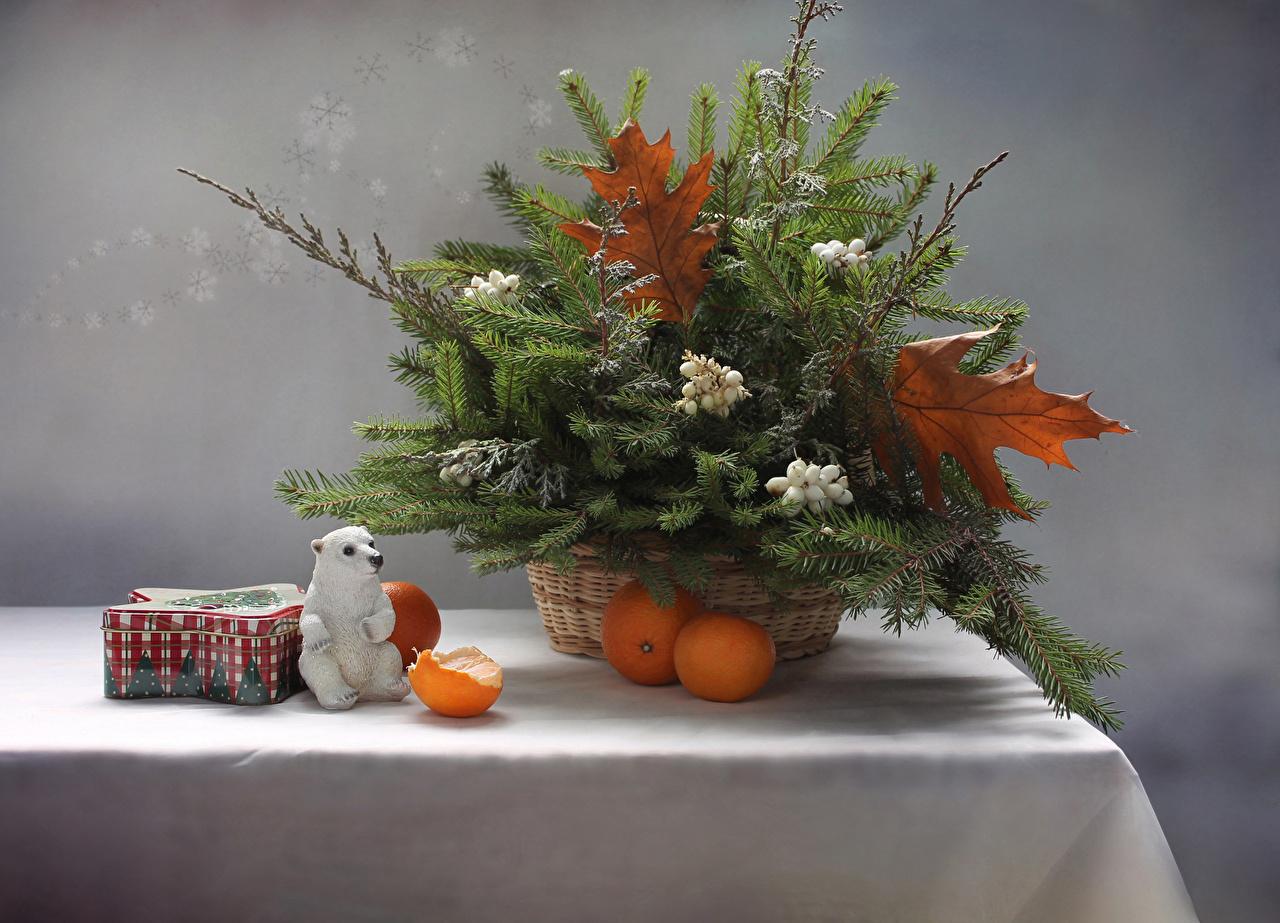 Фото Мандарины Пища ветвь столы Натюрморт Еда Стол стола ветка Ветки на ветке Продукты питания