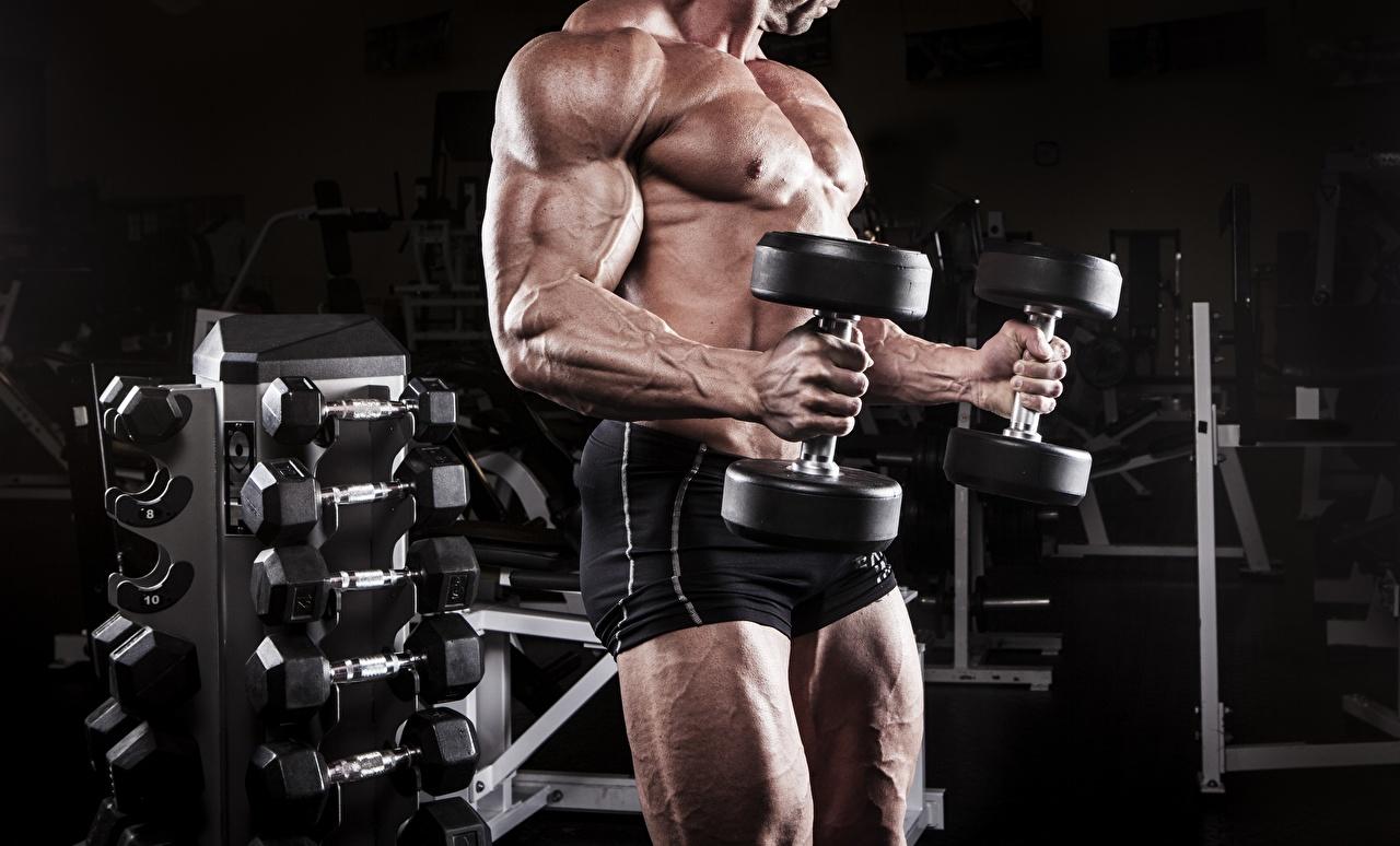 Картинки Мужчины мускулы тренируется Спорт гантелей Бодибилдинг Руки шортах Мышцы мужчина Тренировка физическое упражнение гантеля гантель Гантели гантелями спортивные спортивная спортивный шорт рука Шорты
