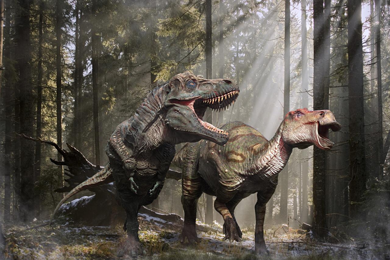 Обои для рабочего стола Тираннозавр рекс Динозавры Edmontosaurus 3д рычит животное Древние животные динозавр 3D Графика злой Оскал злость Животные