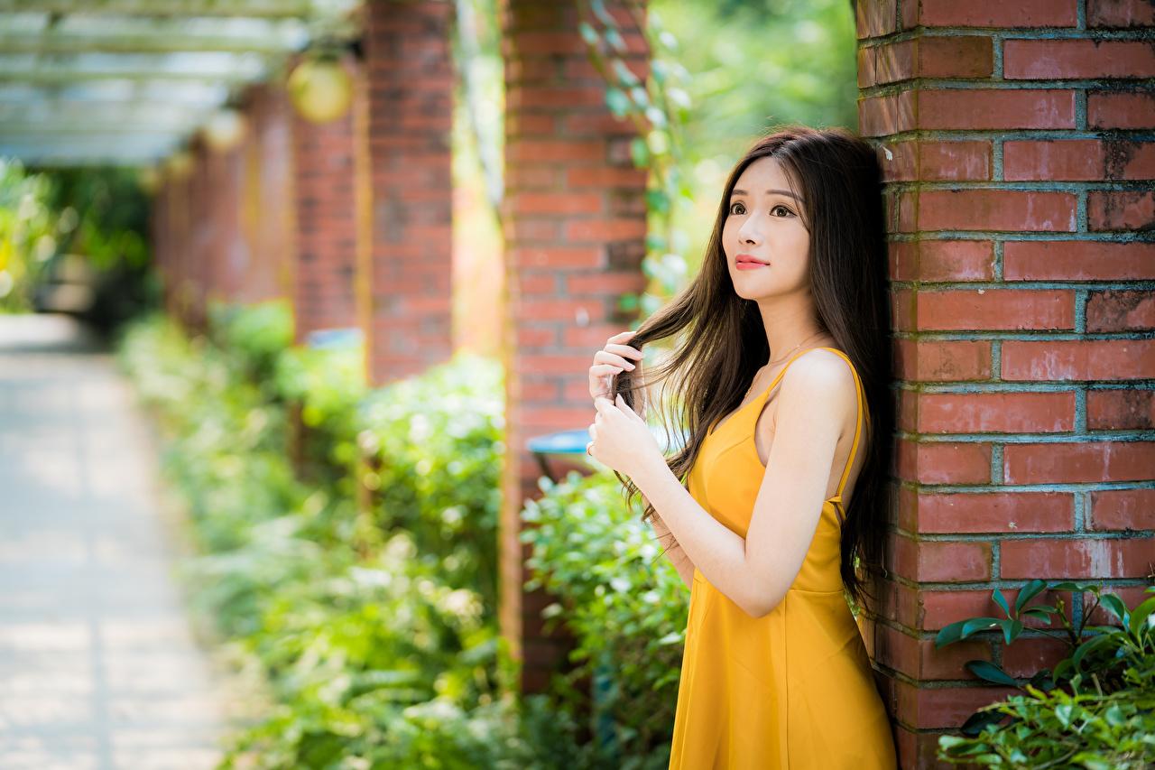 Фотография шатенки боке девушка Азиаты рука Платье Шатенка Размытый фон Девушки молодая женщина молодые женщины азиатки азиатка Руки платья