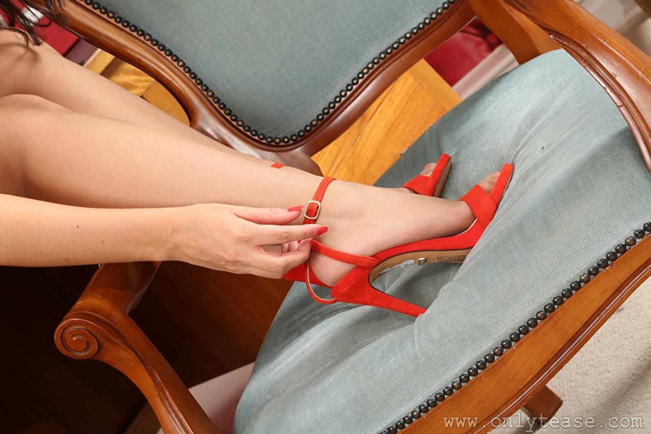 Фотографии Колготки Девушки Ноги Руки Стулья вблизи Туфли колготок колготках девушка молодая женщина молодые женщины ног стул рука Крупным планом туфель туфлях