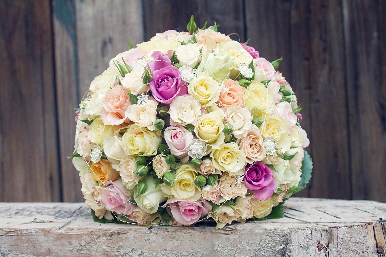 Фотография Разноцветные букет Розы цветок Букеты роза Цветы