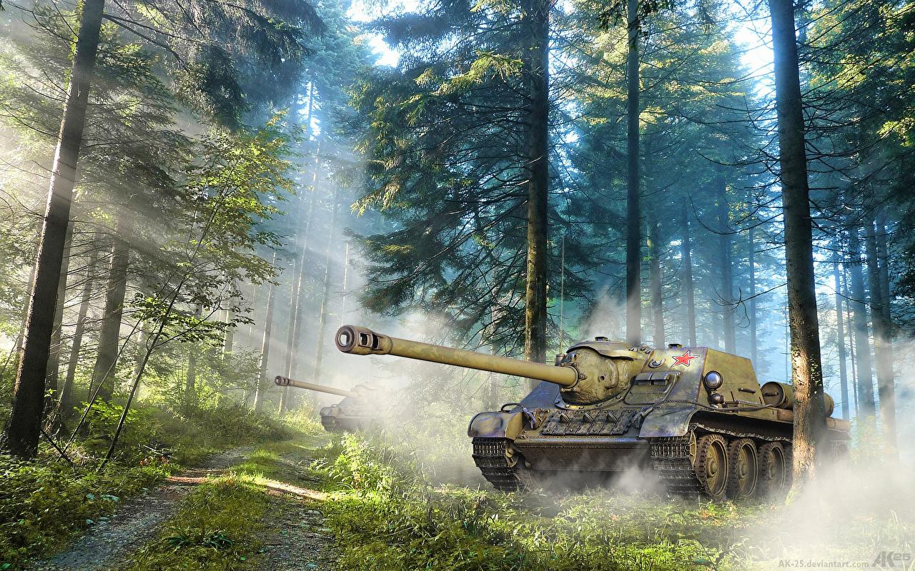 Картинки Лучи света САУ Su-122p Природа Леса Дороги деревьев Армия Самоходка лес дерево дерева Деревья военные
