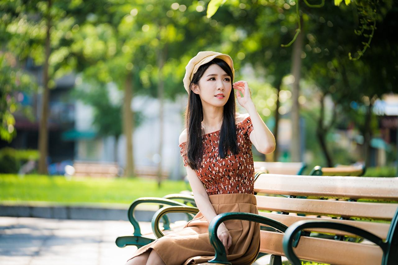 Фотография брюнеток Размытый фон Девушки азиатки Сидит Скамья Брюнетка брюнетки боке девушка молодые женщины молодая женщина Азиаты азиатка сидя сидящие Скамейка