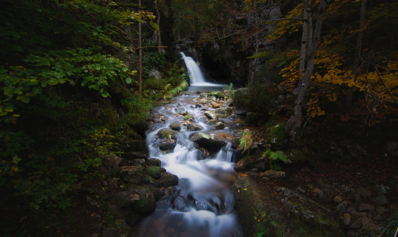 Картинка Ручей осенние Природа Мох Камень Осень ручеек мха мхом Камни