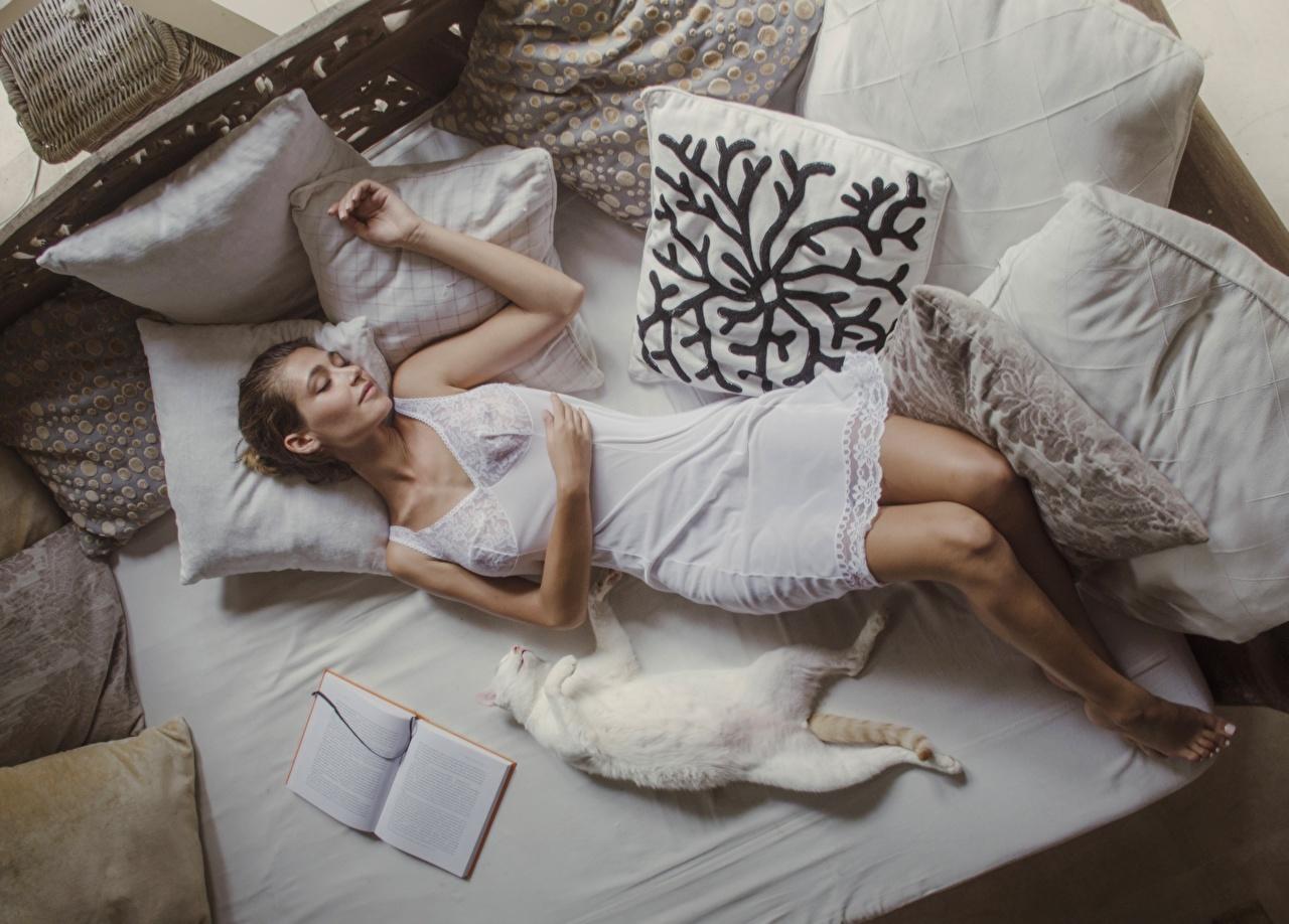 Картинки Коты лежат David Dubnitskiy спящий Девушки кровати Подушки Платье Кошки лежа Лежит лежачие сон спят Спит кровате Кровать подушка платья