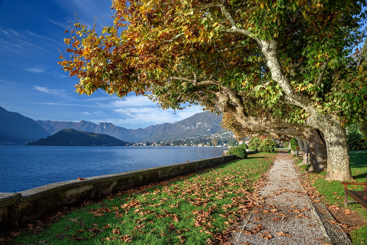 Фото альп Италия Листва Lago di Como, Tremezzo гора Осень Природа Озеро набережной дерево лист Альпы Листья Горы осенние Набережная дерева Деревья деревьев