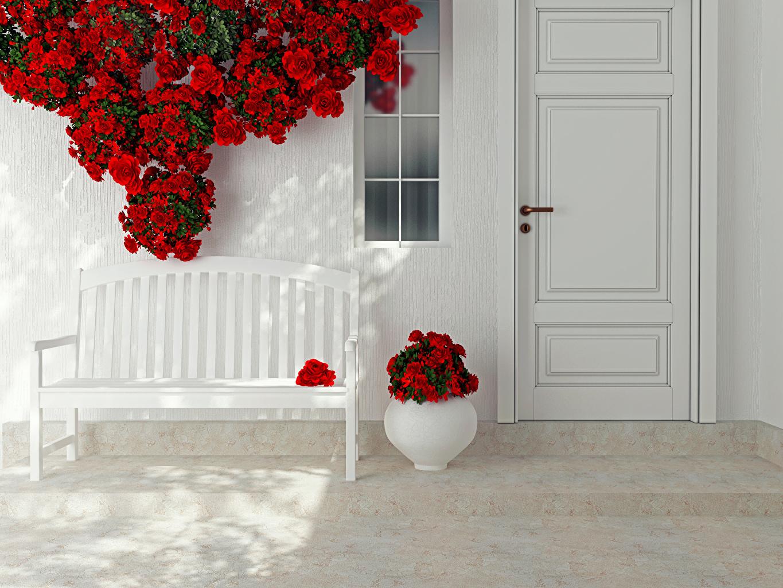 Фотографии Розы красные Цветы вазе Дверь Скамейка Дизайн роза красных красная Красный цветок вазы Ваза двери Скамья дизайна