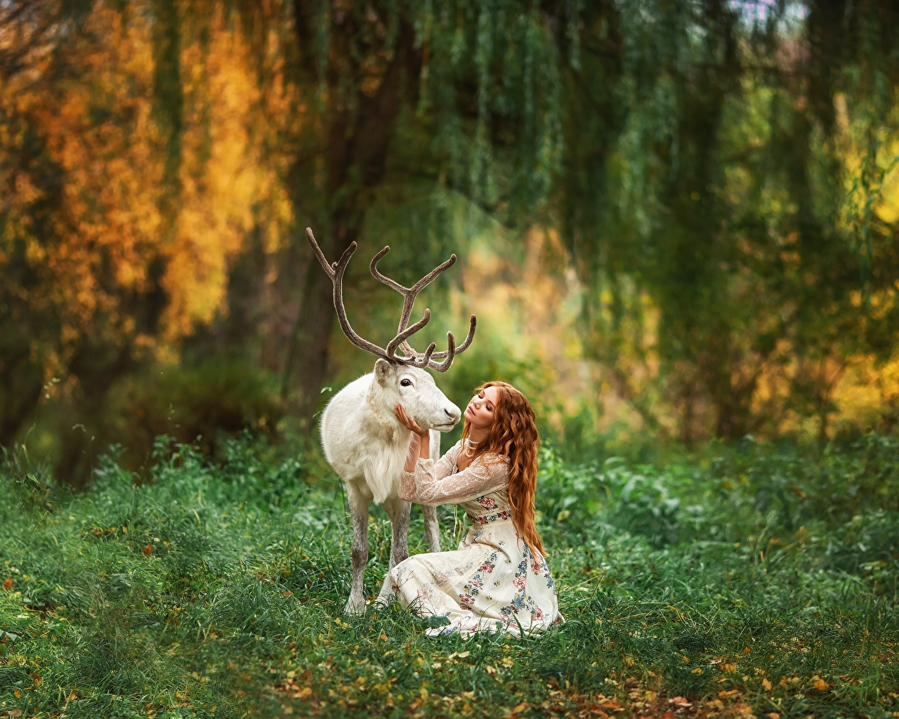 Фотографии Олени Рога Размытый фон белая молодая женщина животное с рогами боке Белый белые белых девушка Девушки молодые женщины Животные