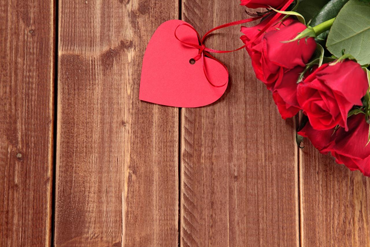 Фотография День всех влюблённых Сердце роза цветок Шаблон поздравительной открытки Доски День святого Валентина серце сердца сердечко Розы Цветы
