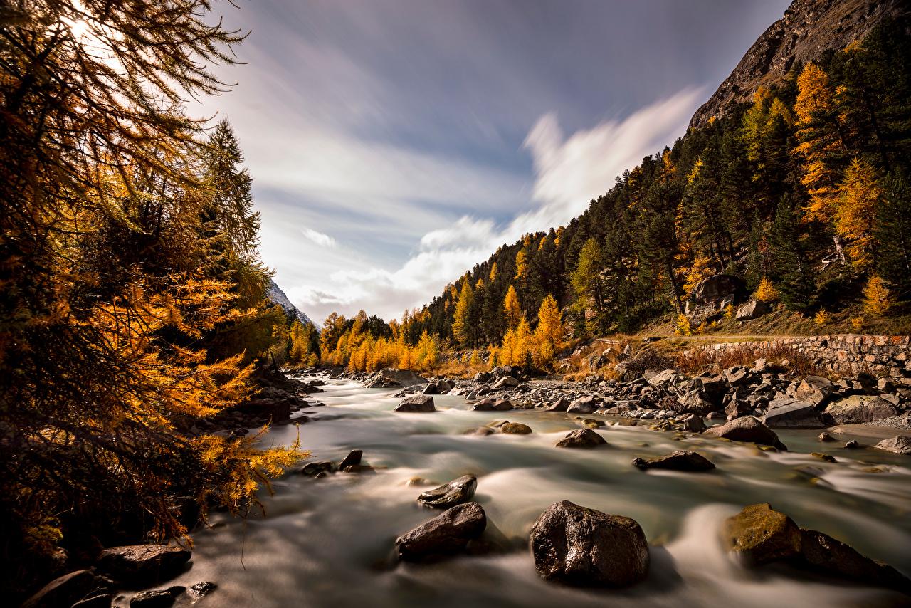 Фотография альп Швейцария Val Roseg Горы Осень Природа река Камень деревьев Альпы гора осенние Реки речка Камни дерево дерева Деревья