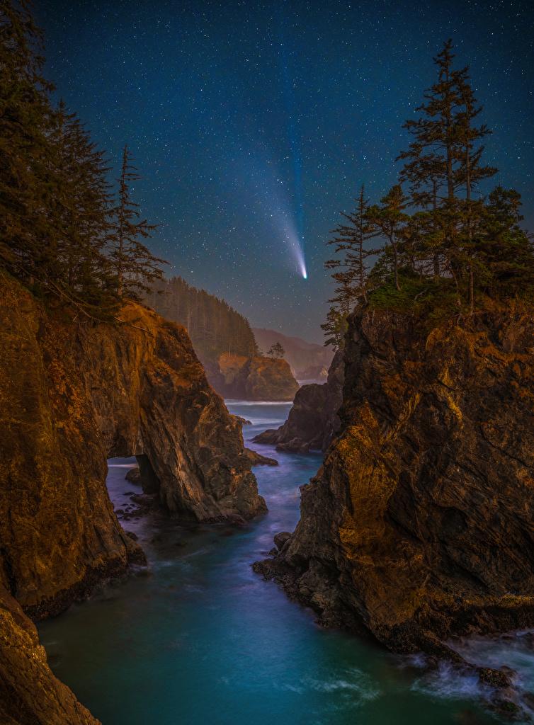Обои для рабочего стола США Звезды Oregon скале Природа Пейзаж берег в ночи Деревья  для мобильного телефона штаты америка Утес Скала скалы Ночь ночью Ночные Побережье дерево дерева деревьев