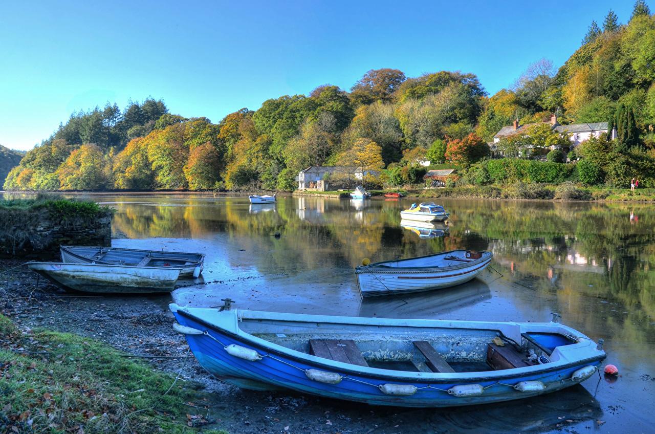 Фотографии Англия Lerryn Природа Леса река Лодки берег лес Реки речка Побережье