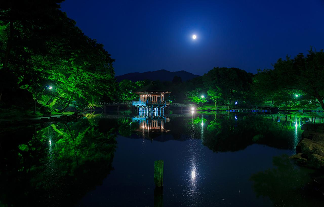 Картинка Япония Nara Park Мосты Природа Луна Пруд Парки Пагоды Ночь Деревья Ночные