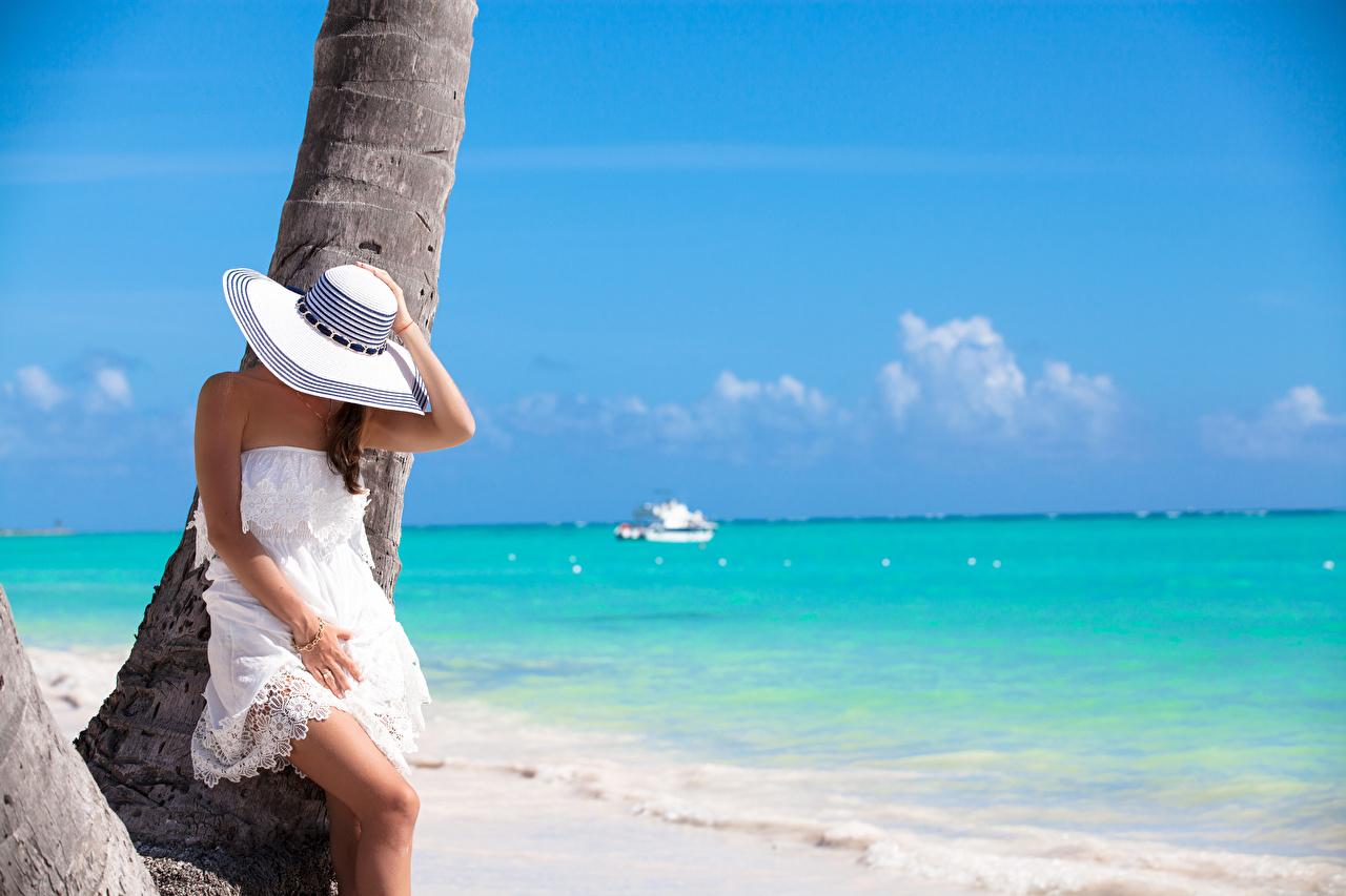 Фото Море Шляпа молодые женщины Ствол дерева рука Платье шляпы шляпе девушка Девушки молодая женщина Руки платья