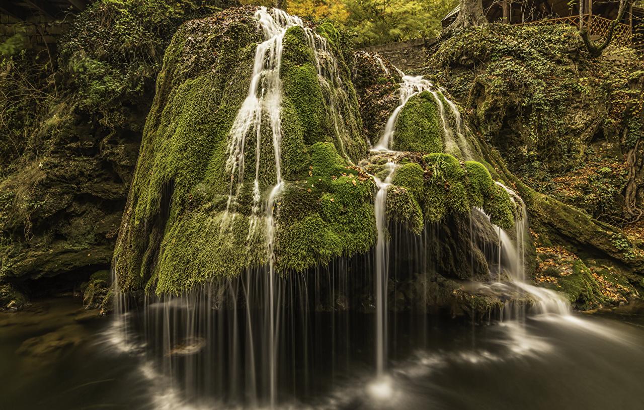 Фотографии Румыния Bigar Waterfall скале Природа Водопады мха Утес скалы Скала Мох мхом