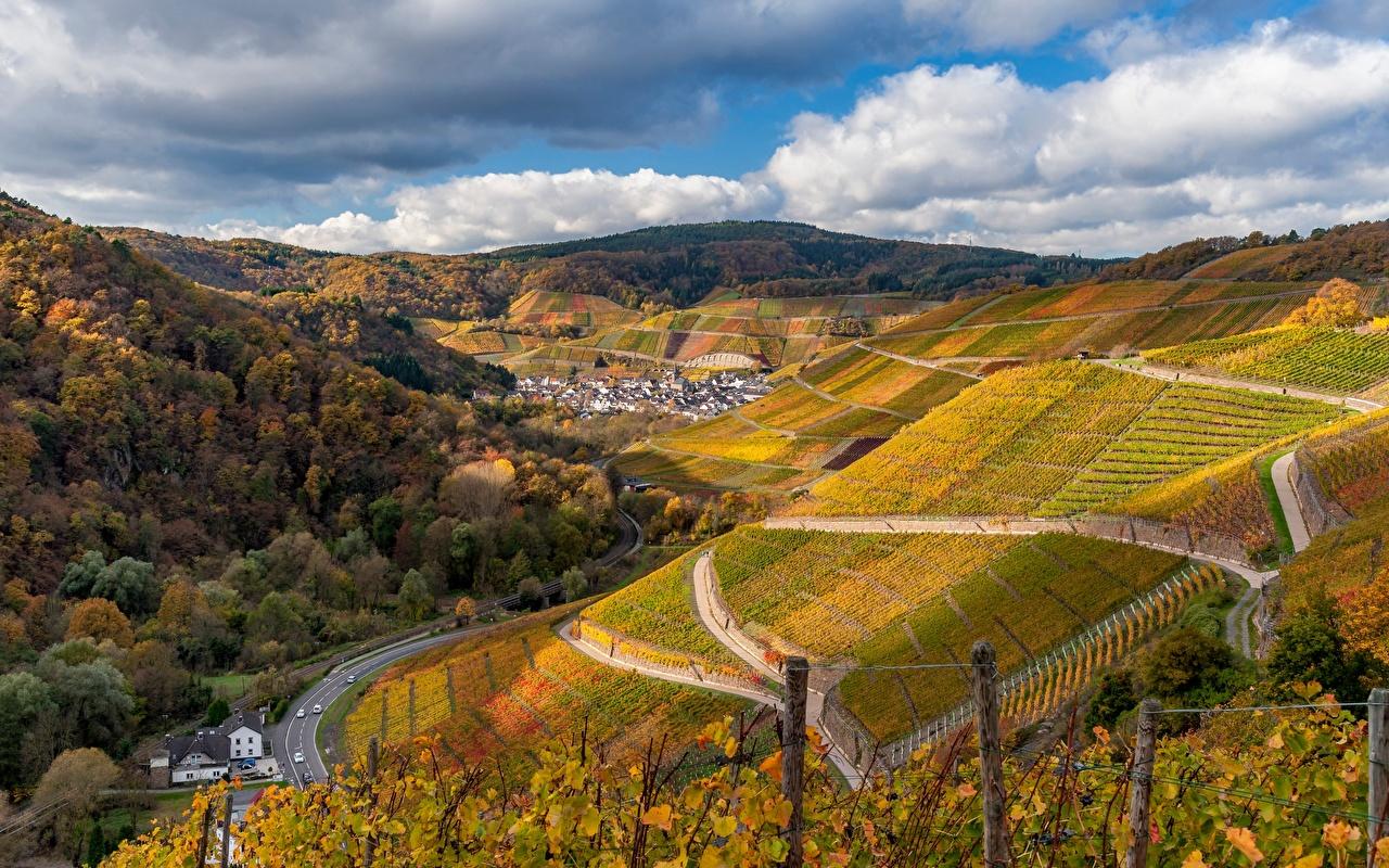 Фотографии Германия Ahr Valley Виноградник Долина Горы осенние Природа Поля Дороги Облака Деревья гора Осень дерево облако дерева облачно деревьев