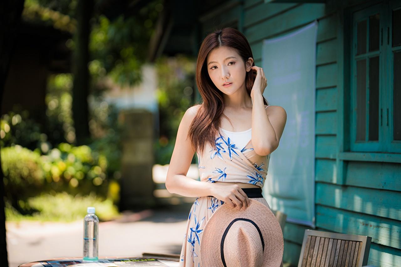Фото шатенки позирует Миленькие шляпе Волосы молодая женщина азиатка Руки смотрит Платье Шатенка Поза милая Милые милый шляпы волос Шляпа Девушки девушка молодые женщины Азиаты азиатки рука Взгляд смотрят платья