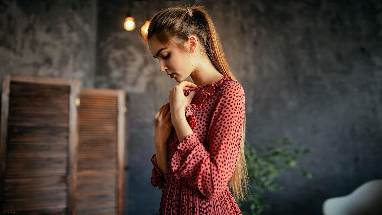 Картинка Шатенка Aleksei Iurev молодая женщина рука Платье шатенки девушка Девушки молодые женщины Руки платья