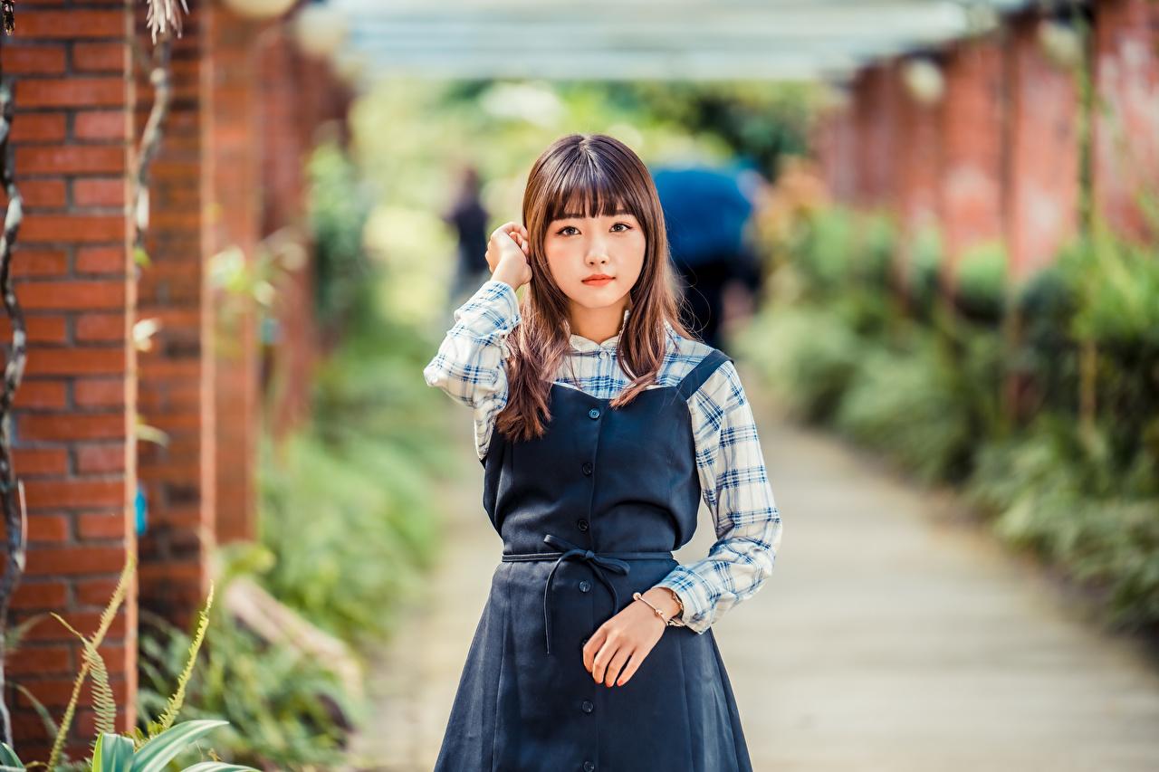 Фотографии Размытый фон девушка азиатка смотрит боке Девушки молодая женщина молодые женщины Азиаты азиатки Взгляд смотрят