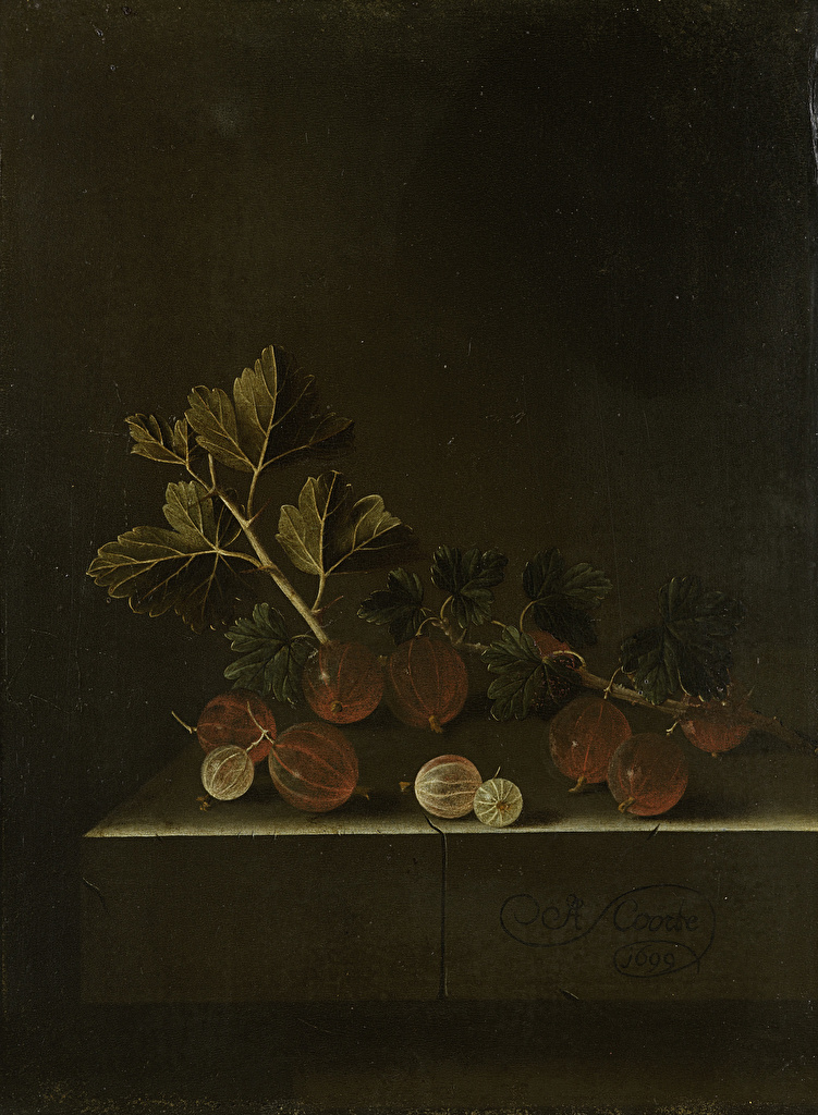 Фотография Adriaen Coorte, A Sprig of Gooseberries on a Stone Plinth Крыжовник Живопись картина