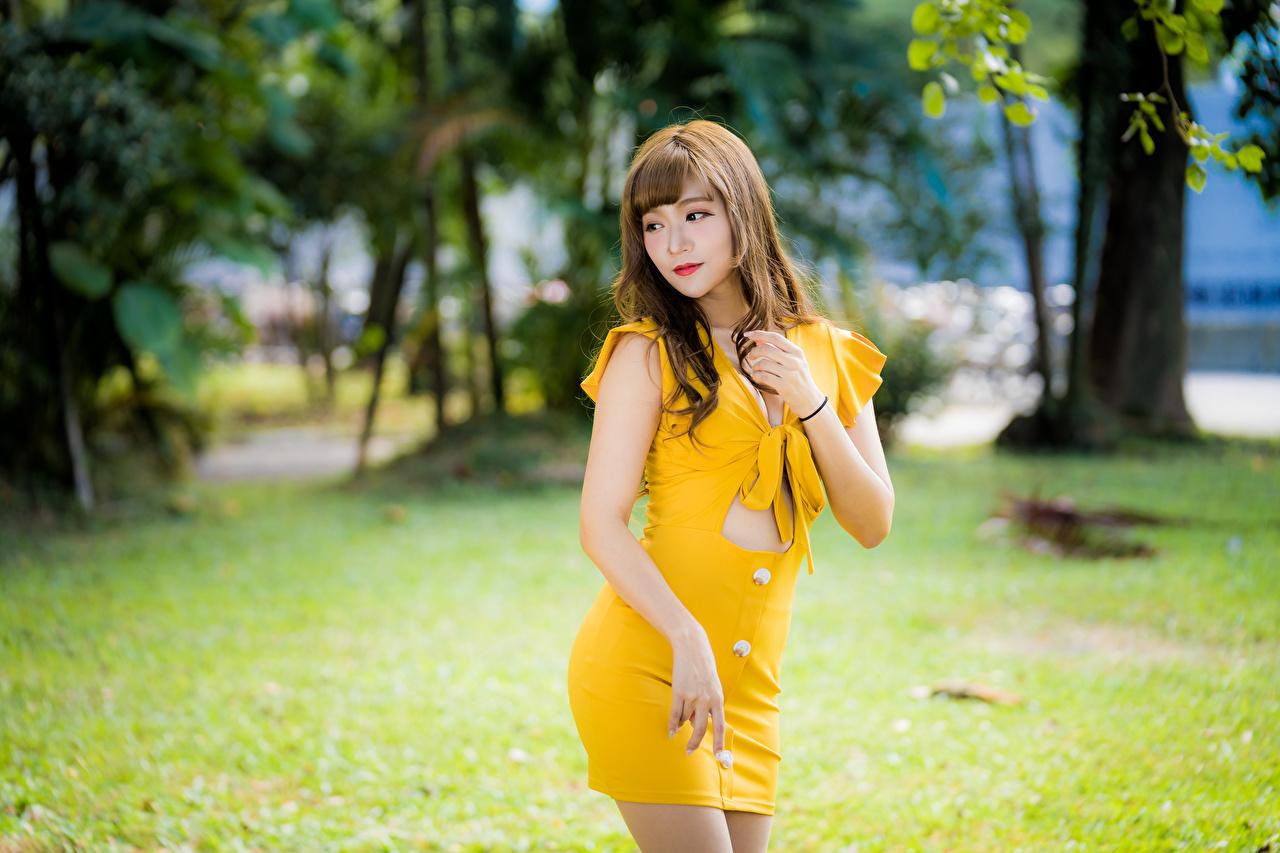 Картинки Размытый фон Поза желтых Девушки Азиаты Платье боке позирует желтая желтые Желтый девушка молодая женщина молодые женщины азиатки азиатка платья
