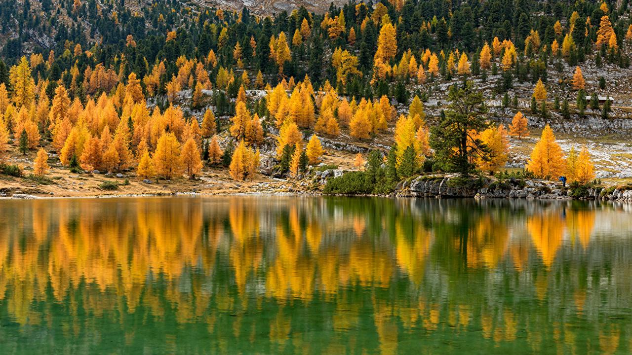 Фото Италия South Tyrol осенние Природа Озеро отражении деревьев Осень Отражение отражается дерево дерева Деревья