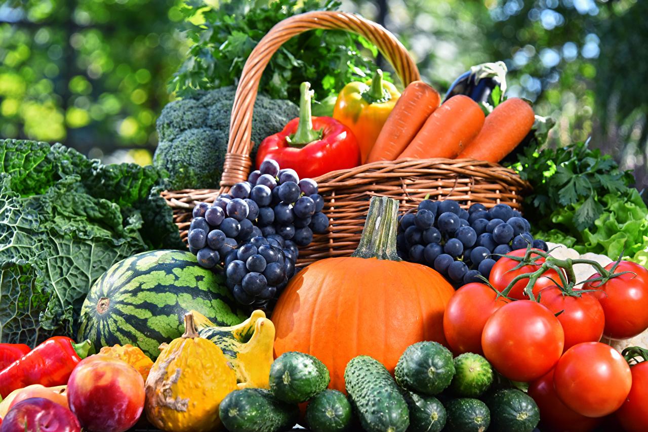 Обои Тыква Огурцы Помидоры Арбузы Виноград Еда Овощи Томаты Пища Продукты питания