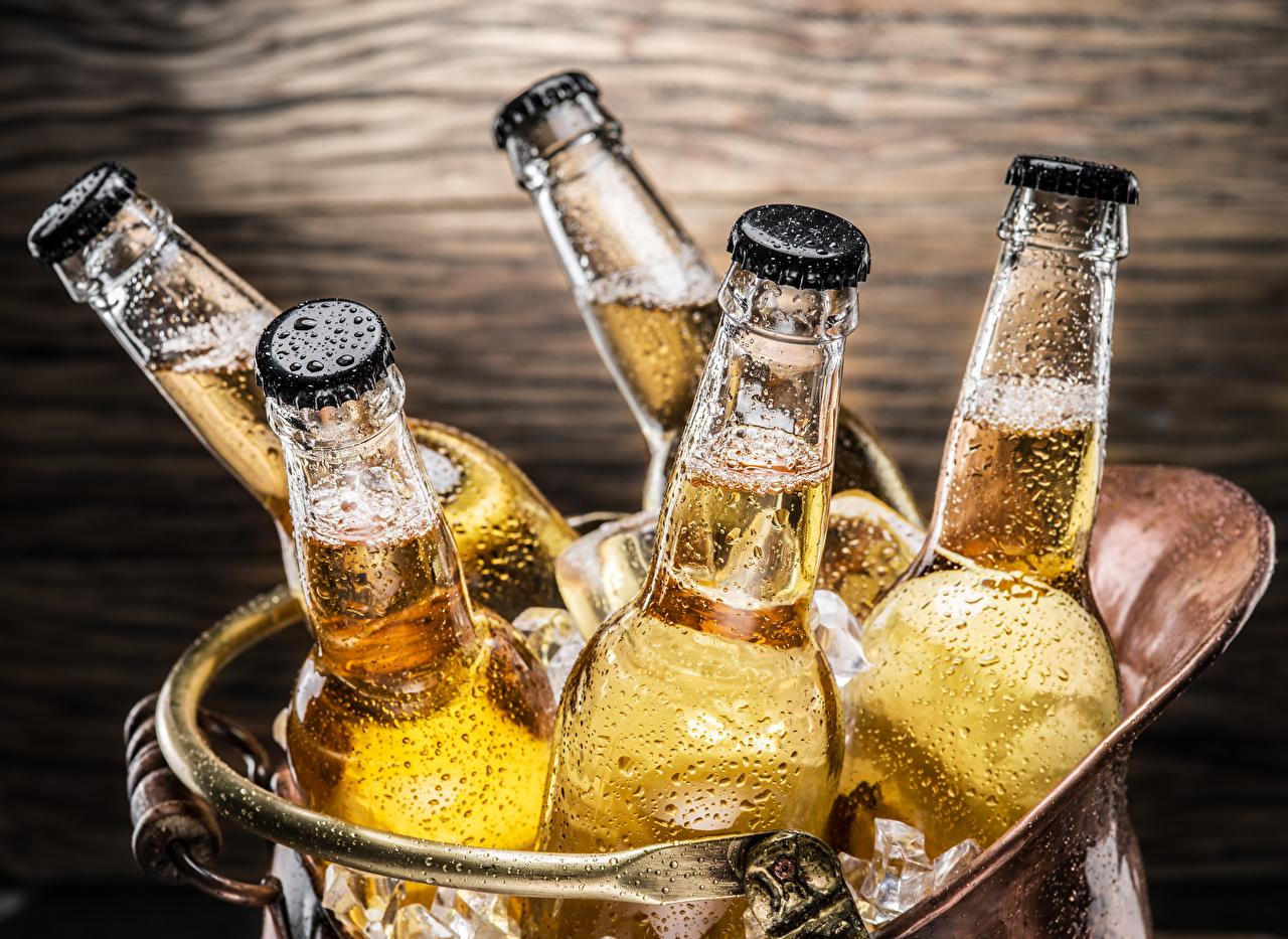 Обои Пиво Капли Еда бутылки капля капель капельки Пища Бутылка Продукты питания