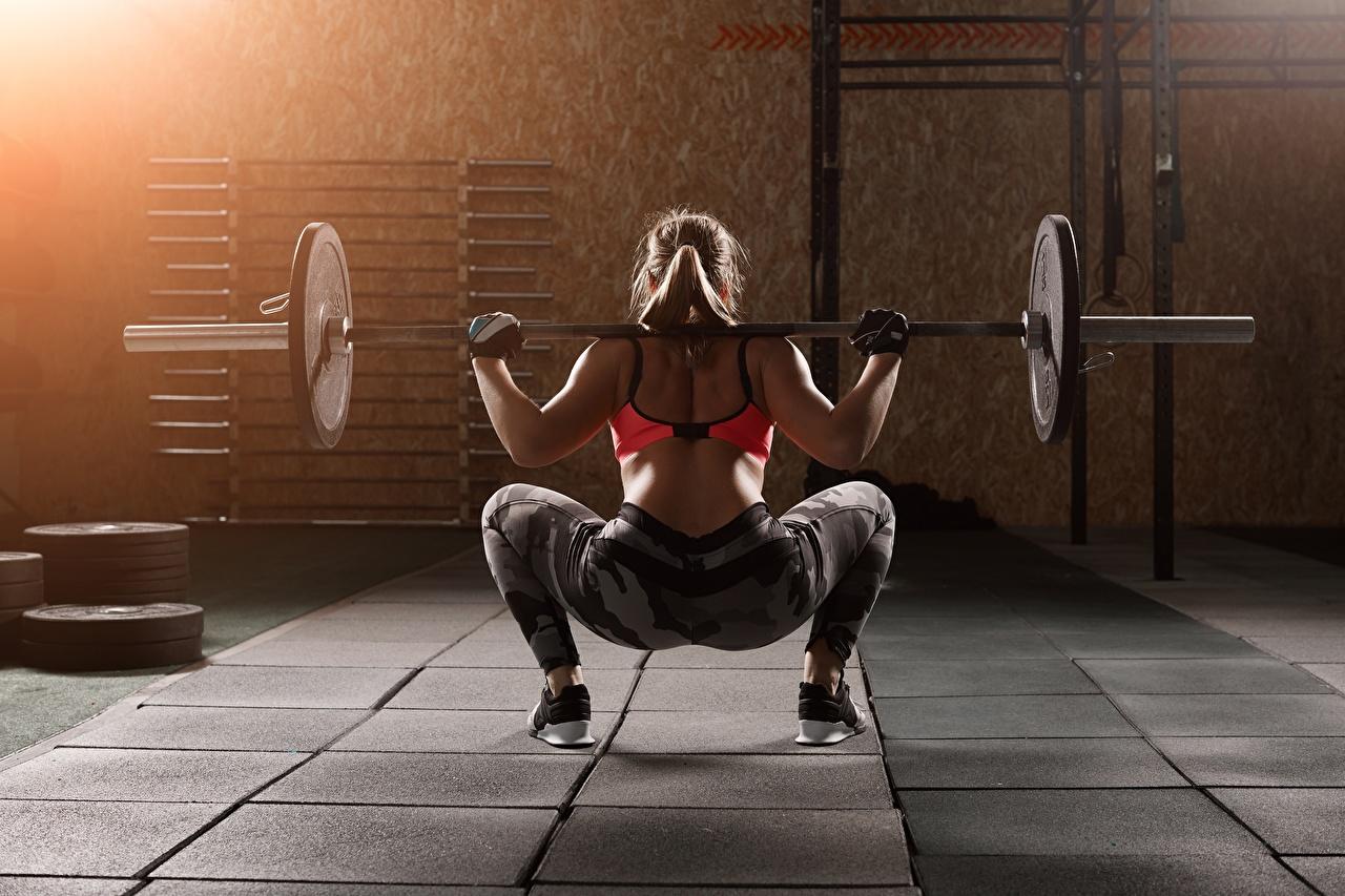 Фото Девушки Тренировка Спина Фитнес штангой садиться Ноги рука вид сзади девушка молодая женщина молодые женщины тренируется физическое упражнение спины Штанга Приседает приседания ног Руки Сзади