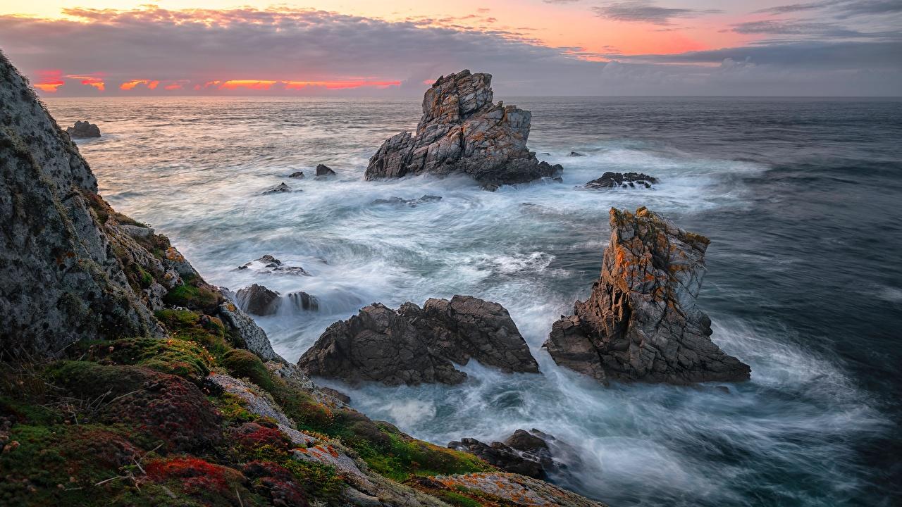 Картинки Море скалы Природа Волны мха берег Утес скале Скала Мох мхом Побережье
