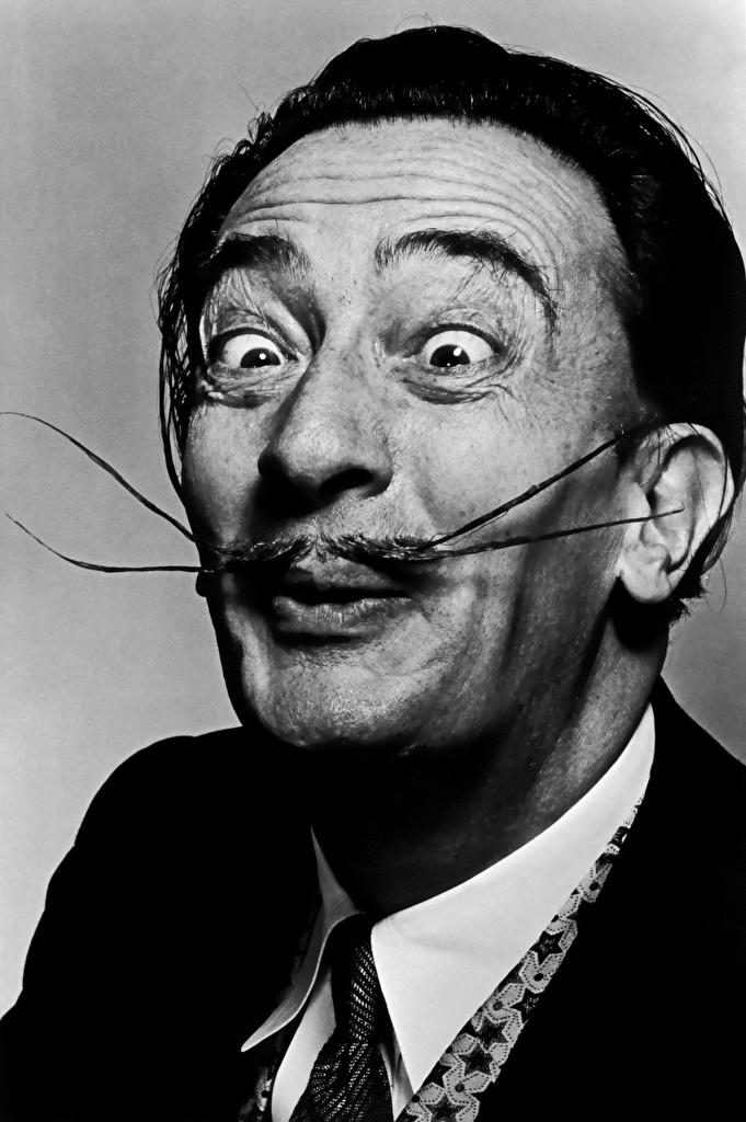 Обои Salvador Dali Мужчины усами лица черно белые Знаменитости Сальвадор Дали Усы человека Лицо Черно белое