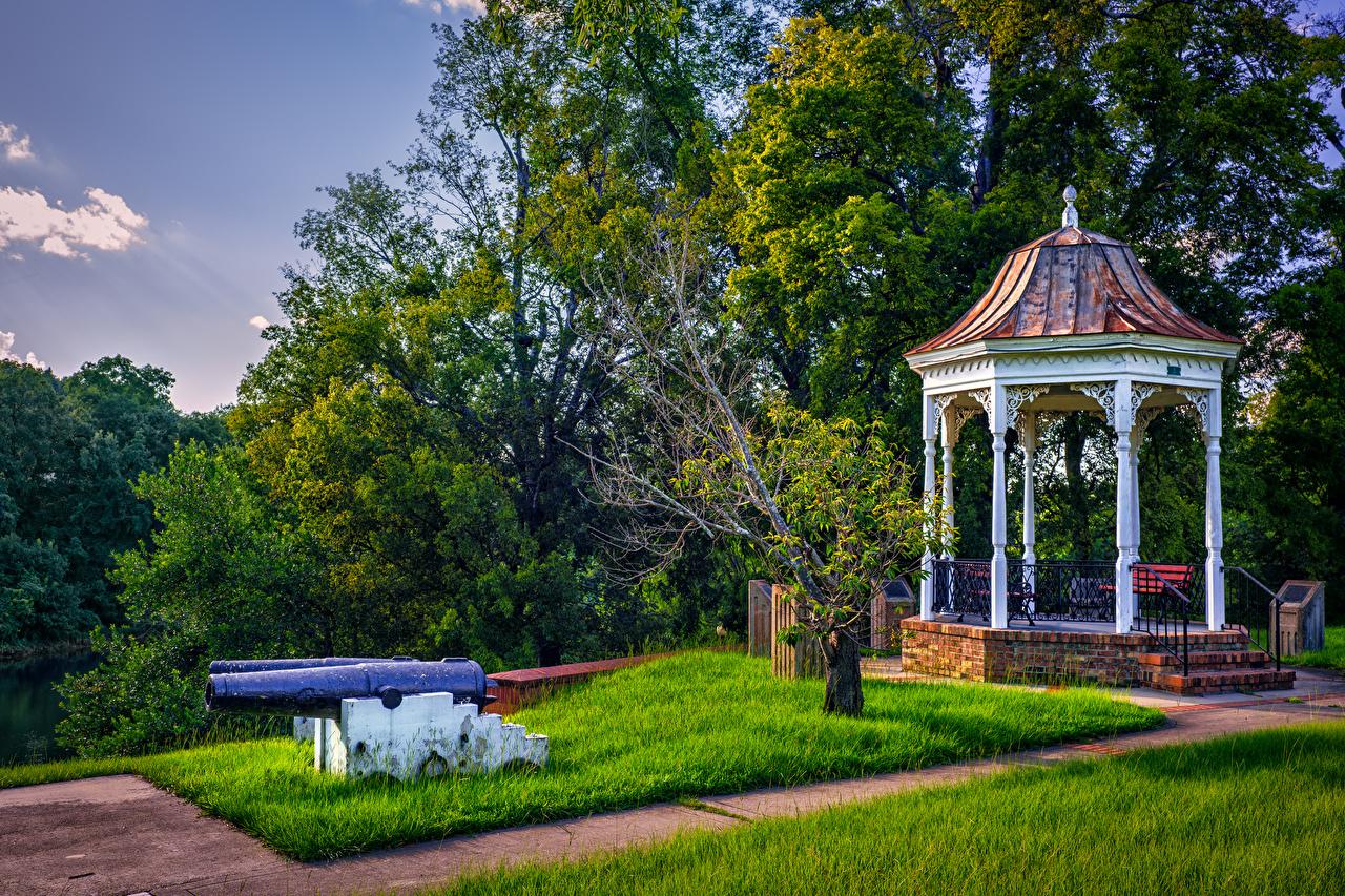 Картинки США Columbus Georgia Природа Парки газоне штаты америка парк Газон