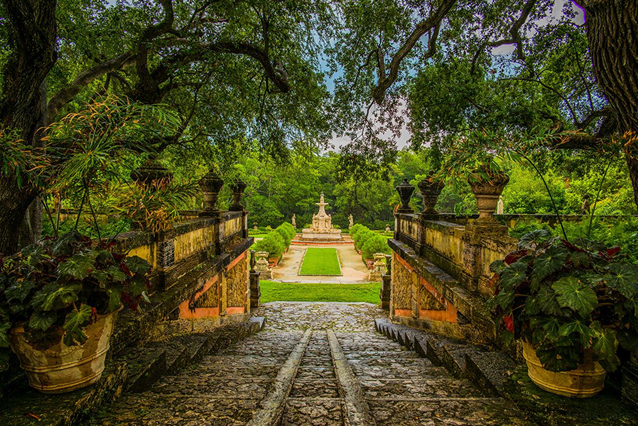Фотографии Майами Флорида США Фонтаны Природа лестницы Парки ветвь Кусты штаты Лестница парк Ветки ветка на ветке кустов