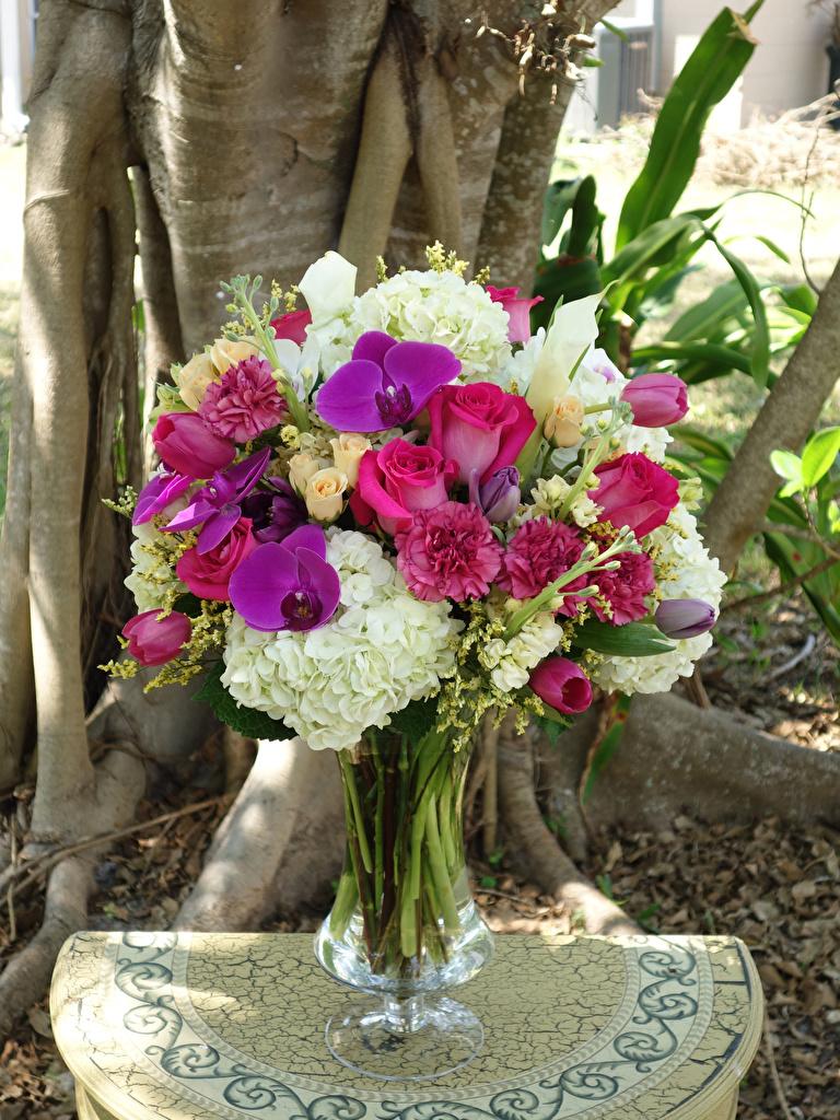 Обои Букеты Розы Орхидеи Тюльпаны Цветы Гортензия