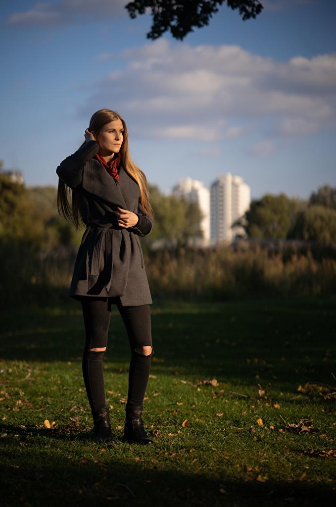 Фотография шатенки Benita Пальто осенние молодые женщины Трава  для мобильного телефона Шатенка Осень девушка Девушки молодая женщина траве