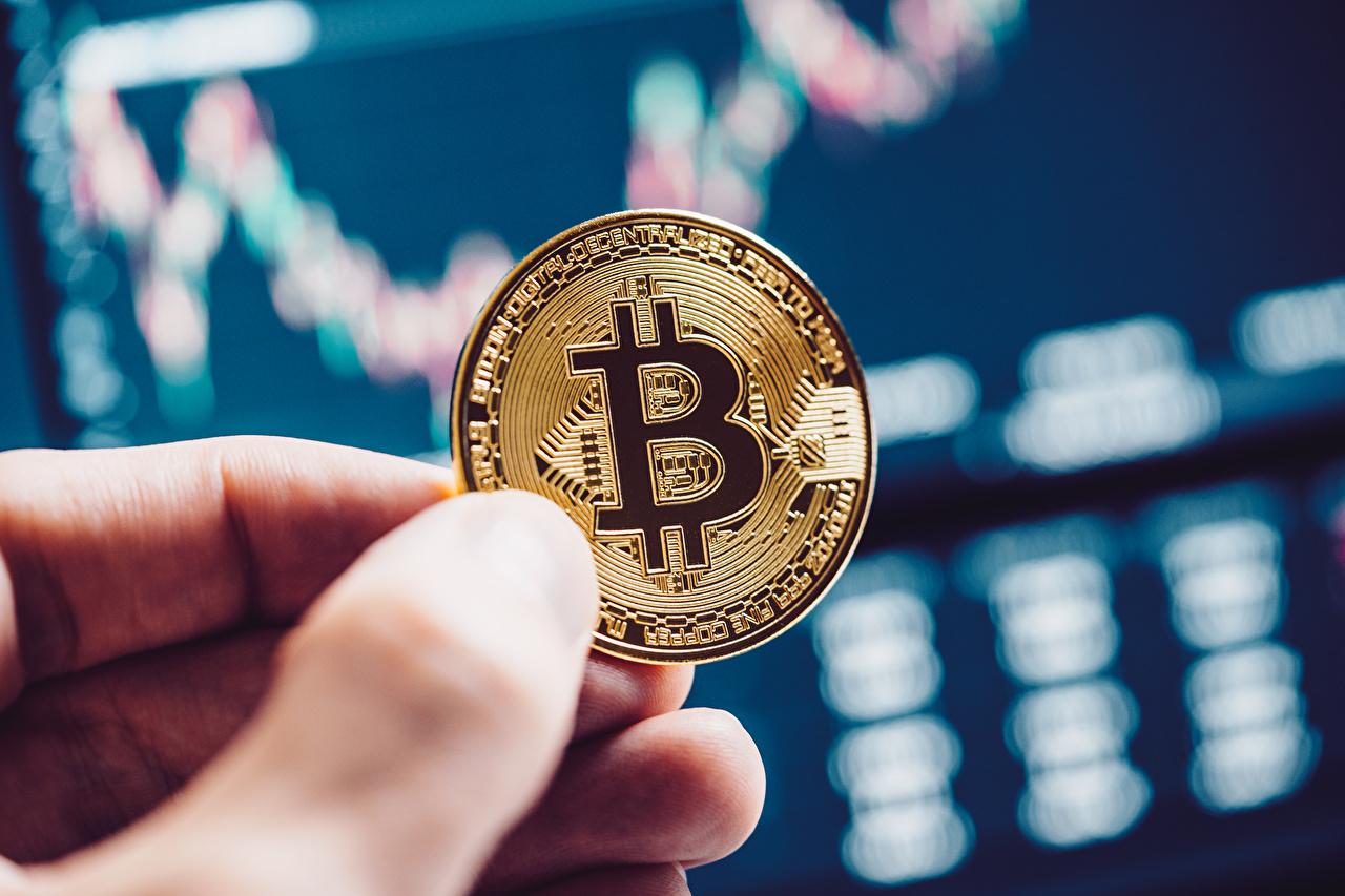 Фотография Bitcoin Монеты Размытый фон Деньги Пальцы вблизи Биткоин боке Крупным планом