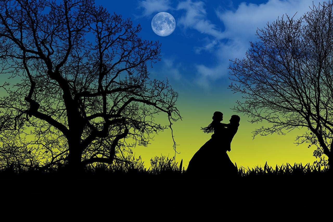 Обои для рабочего стола свидании Силуэт две Любовь луны Ночь дерева Свидание силуэты силуэта 2 два Двое вдвоем Луна луной ночью в ночи Ночные дерево Деревья деревьев
