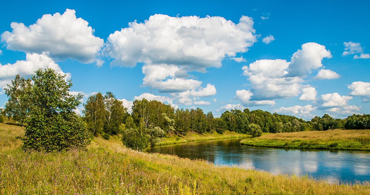 Фотография Россия Moscow river Природа Небо река траве дерево Облака Реки Трава речка облако дерева Деревья облачно деревьев