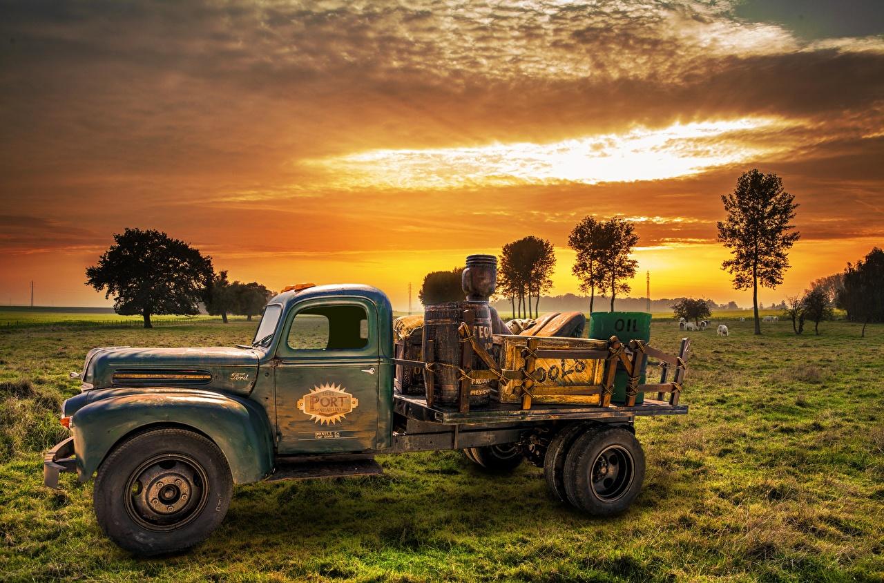 Фотография Грузовики старинные рассвет и закат Трава Сбоку старые Автомобили Ретро винтаж Рассветы и закаты авто траве старая Старый машины машина автомобиль