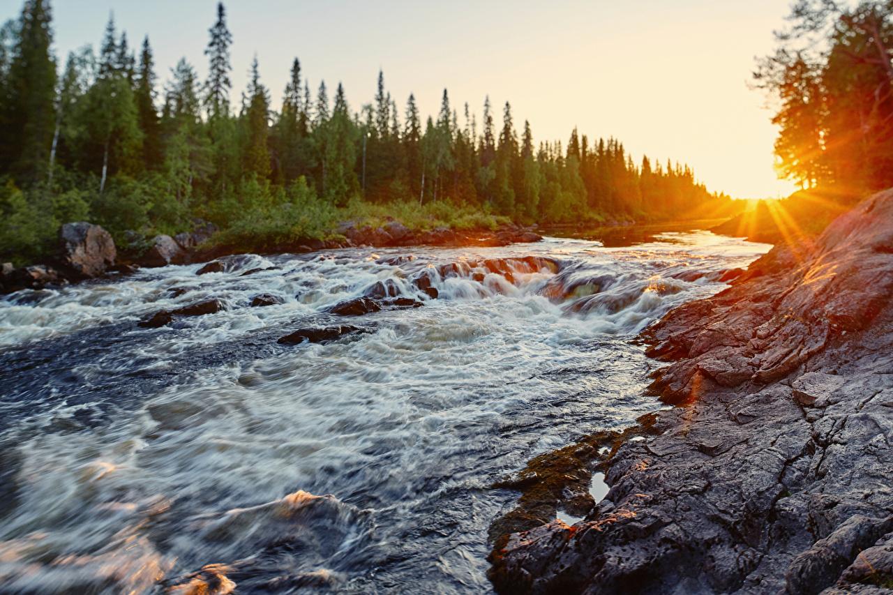 Фото Лучи света Россия Karelia, River Tumcha Природа Рассветы и закаты речка рассвет и закат Реки река