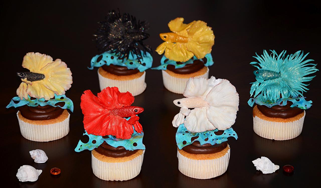 Картинки Шоколад Рыба Пища Сладости Пирожное Черный фон Дизайн Еда Продукты питания сладкая еда на черном фоне дизайна