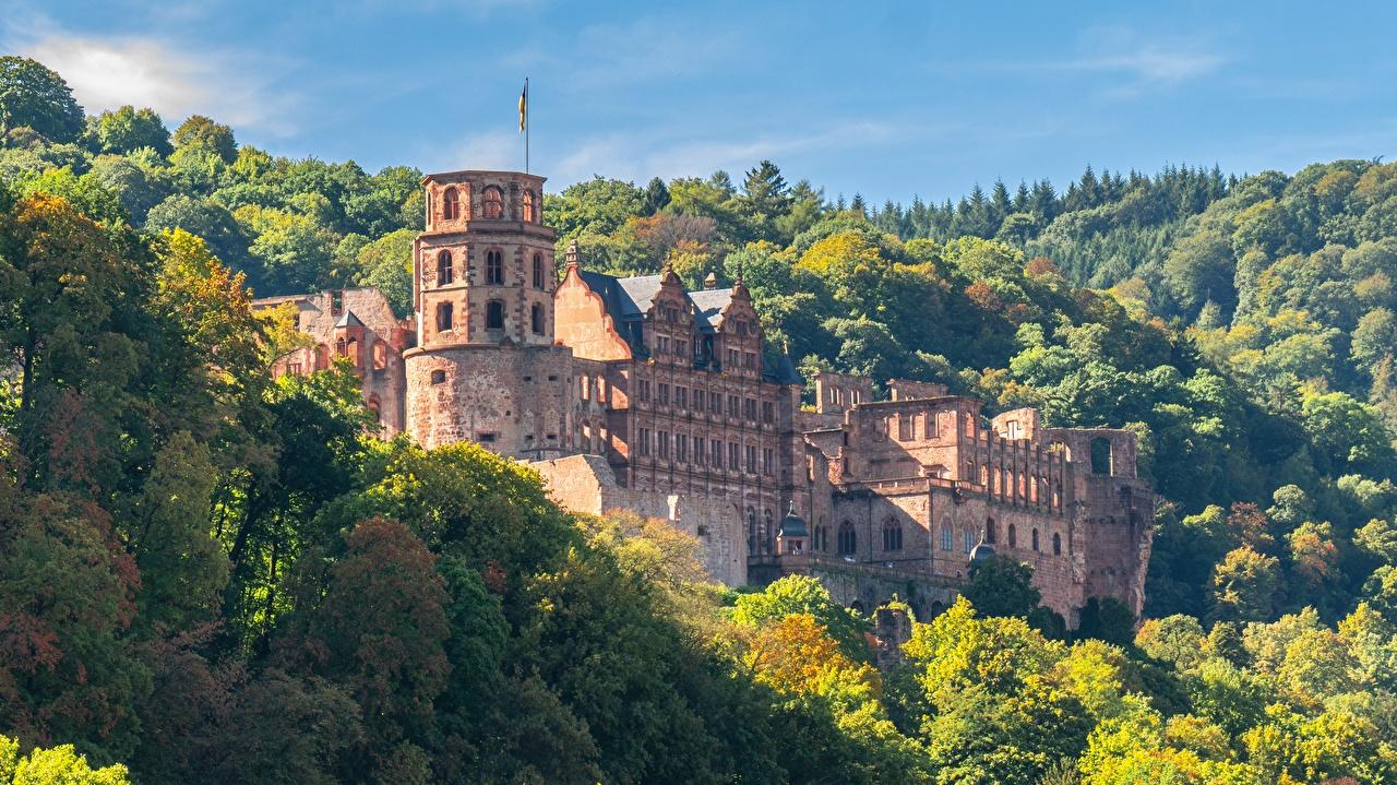 Обои для рабочего стола Германия Крепость Heidelberg castle, Heidelberg Осень Замки Леса Руины Города замок осенние лес Развалины город