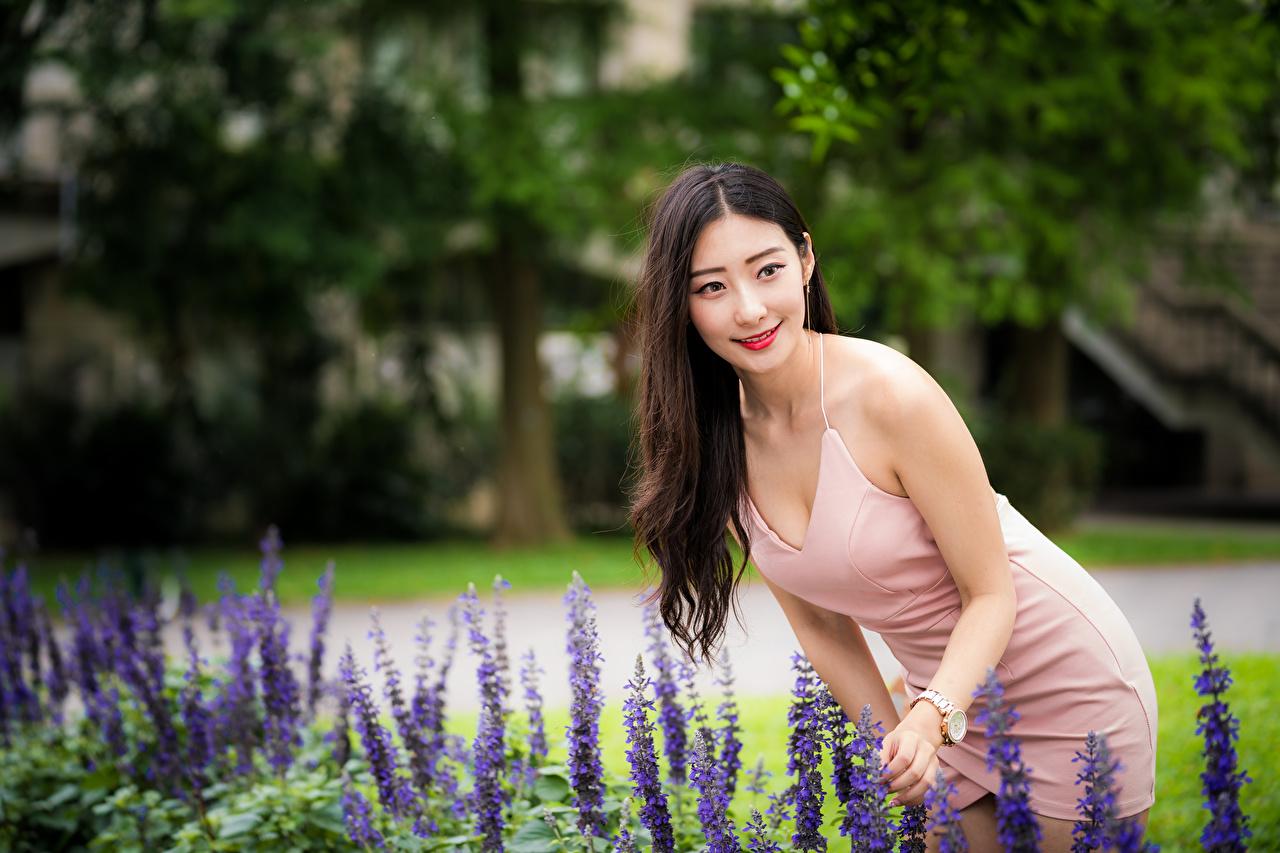 Обои для рабочего стола улыбается Размытый фон Девушки азиатка Платье Улыбка боке девушка молодая женщина молодые женщины Азиаты азиатки платья