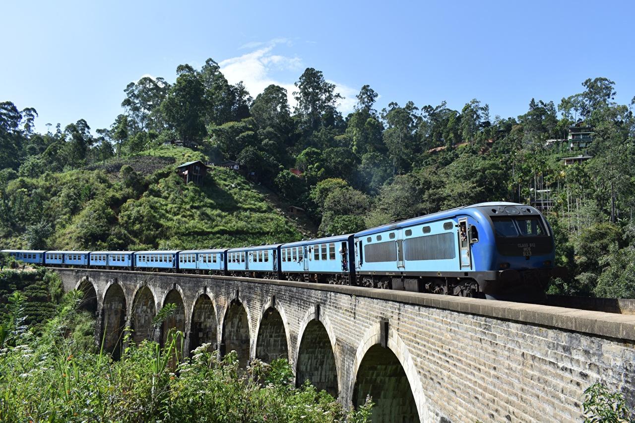 Обои для рабочего стола Шри-Ланка мост Поезда Мосты